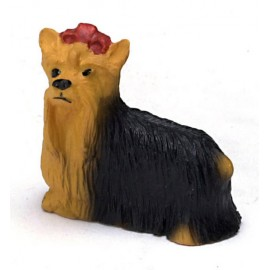 Malý Yorkshire Terrier