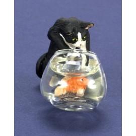 Černo-bílá kočka s akváriem