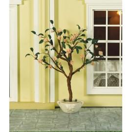 Kvetoucí stromek v nádobě